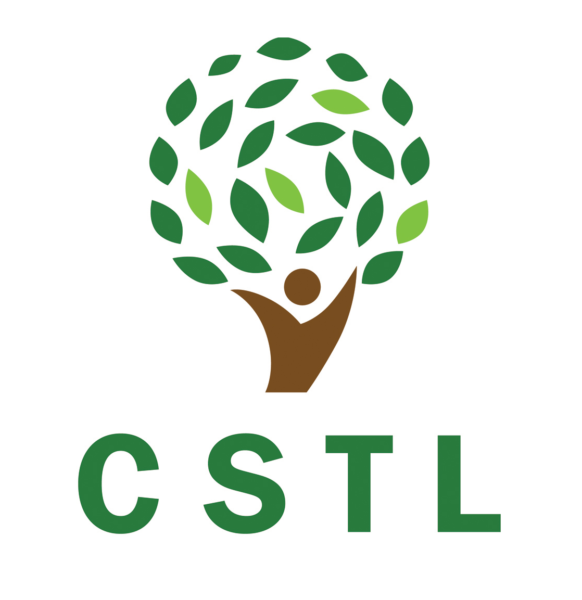 Terms of Reference || Building and Curating the CSTL Ecosystem